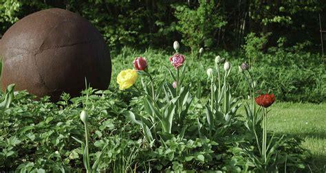 Pilze Englischer Garten wald und garten gut falkenberg