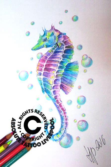 seahorse colors seahorse colours seahorse