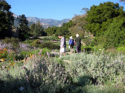 santa botanic gardens santa barbara botanic gardens