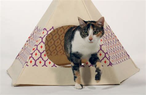 cardboard cat house plans cardboard cat house plans