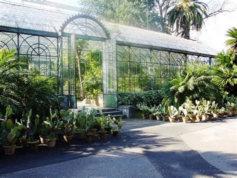 giardini botanici roma orto botanico palermo una gita a orto botanico di palermo