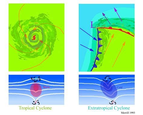 diagram of a cyclone tropical cyclones diagram www imgkid the image kid