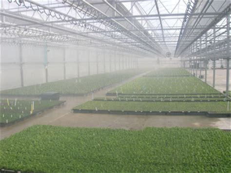 heat l for greenhouse greenhouse humidifiers smart fog