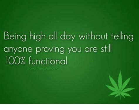 hi all does anyone any being high all day without telling anyone proving you are still 100 functional