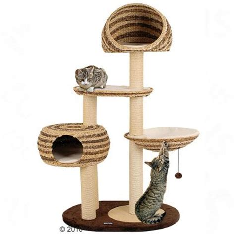 100 best cat trees and cat scratching posts