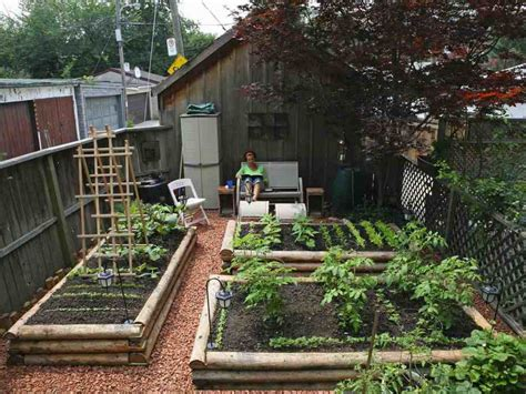 backyard urban farm company the backyard urban farm company s pop up garden shop and