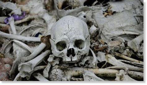 Backyard Skulls by Cops Question Hoarder After Homeowners Find Human