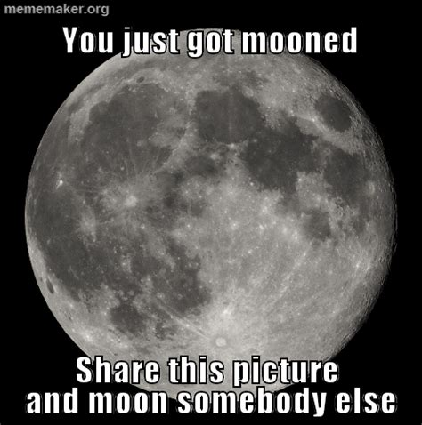Full Moon Meme - full moon meme 28 images the best full moon memes