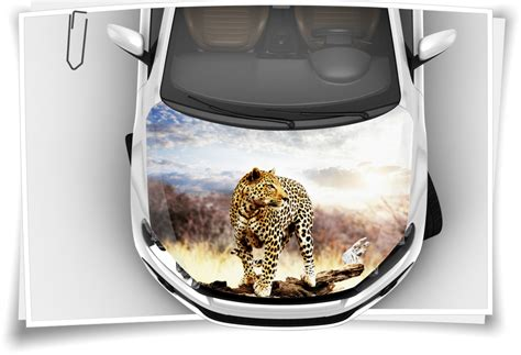 Motorhauben Aufkleber Airbrush by Leopard Motorhaubenaufkleber Aufkleber Autoaufkleber