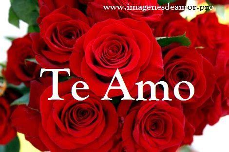 imagenes de rosas te amo 14 imagenes de hermosas rosas con frase te amo