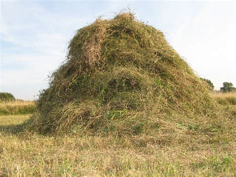 haystack 04 scything and haymaking with clive leeke on