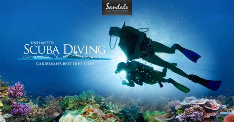 dive vacation scuba diving vacations jamaica lucia antigua