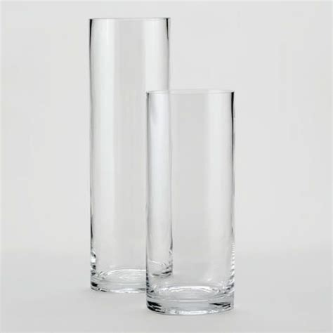 Clear Glass Cylinder Vases by Clear Glass Cylinder Vases Decor