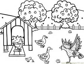 chicken hen feeding farm coloring free hens roosters coloring pages