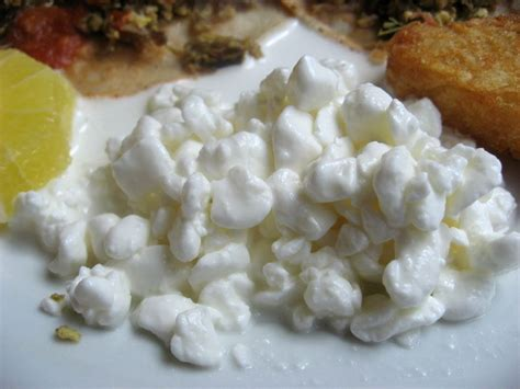 cottage cheese curd review food and restaurants at riu palace pacifico