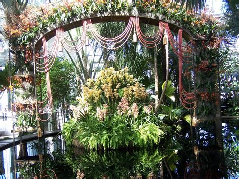 Orchid Show Bronx Botanical Garden Orchid Show 2011 Bronx Botanical Gardens Home Pinterest