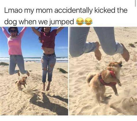 Dog Mom Meme - my mom accidentally kicked the dog when we jumped memes dopl3r com