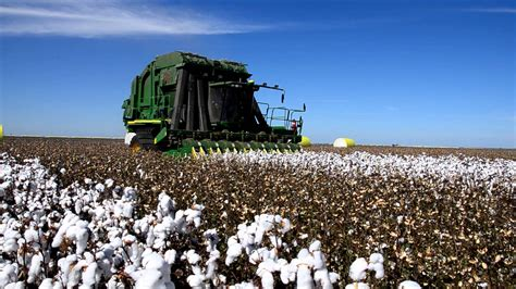 John Deere Wall Stickers cotton harvest wee waa australia 2013 youtube