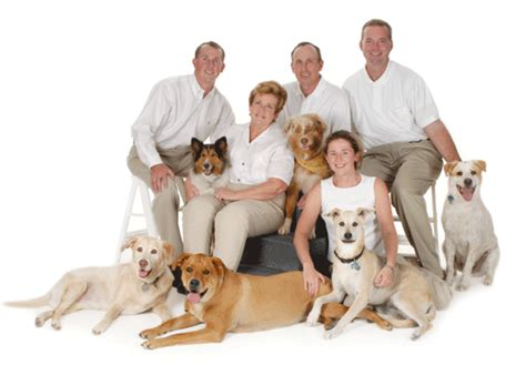 pet technologies on twitter we have moved to new installations about us padonia veterinary hospital
