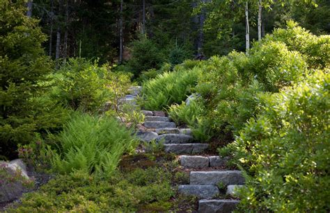 rock for gardens where to buy where to buy stepping stones for rustic landscape and ferns hillside mass plantings outdoor