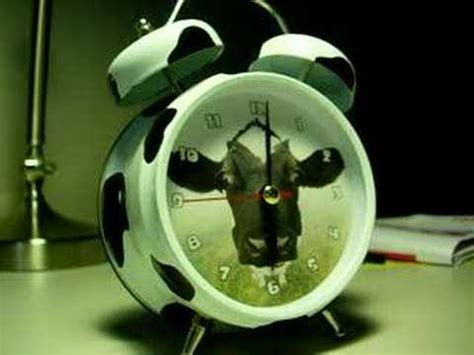mooing cow clock