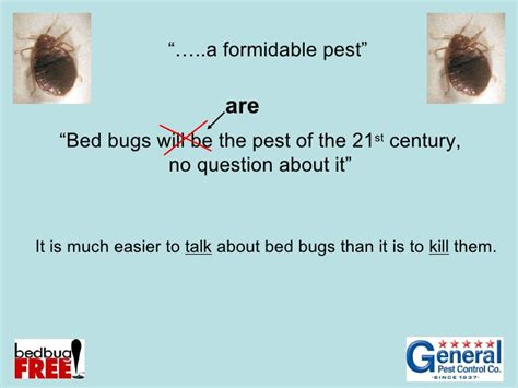 bed bug treatment options bed bug treatment options 28 images the most popular