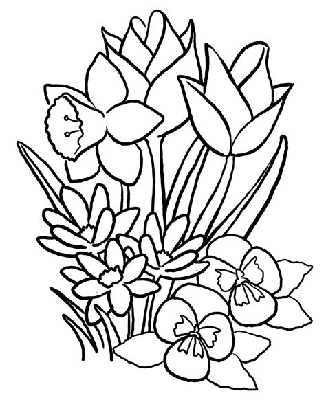 printable spring coloring pages for adults spring coloring pages printable spring coloring pages