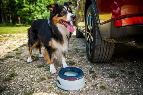 nissan x trail for dogs price nissan x trail becomes friendly with new paw pack