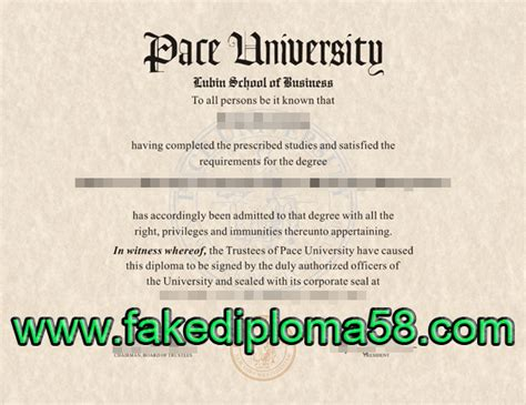 Affording A Mba At Pace Universit by They The Degree But They Can T Make It