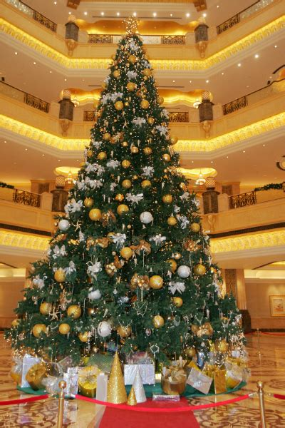 most expensive type of tree for christmas tree national tree day 10 terrific tree records to get you in the spirit
