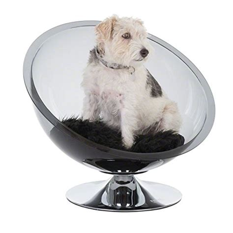 arredamento per cani divano per cani non arredamento