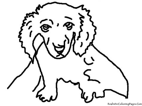 coloring pages of realistic dogs realistic coloring pages of dogs realistic coloring pages
