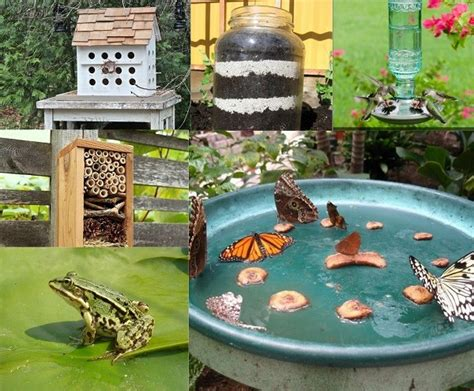 how to make a garden in your backyard 10 cool ways to attract endless wildlife to your backyard