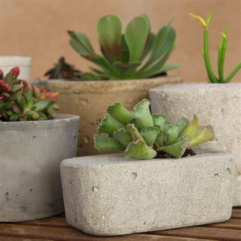 Make Your Own Planters by How To Make A Cool Concrete Planter Of Your Own Gizmodo