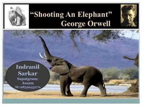 George Orwell Shooting An Elephant Essay by Shooting An Elephant By I S