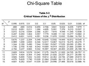 univariate bivariate analysis hypothesis testing chi square