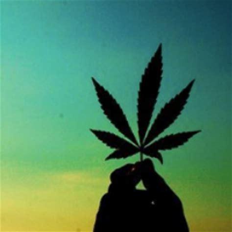 Imagenes De Weed Reales   media tweets by marihuana marihuanaes twitter