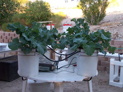 build your own hydroponics drip system