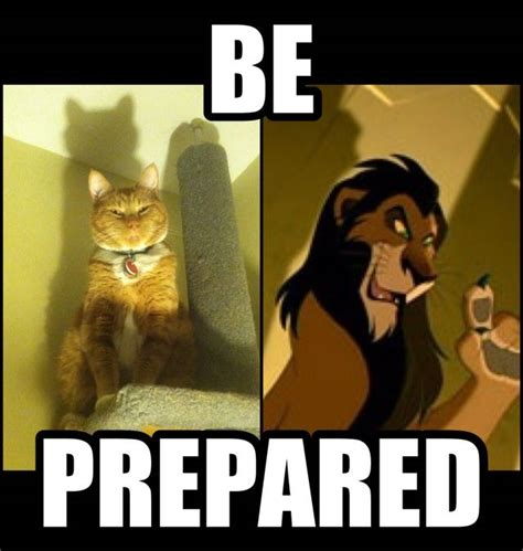Be Prepared Meme - my cat tries to intimidate me by acting like scar and