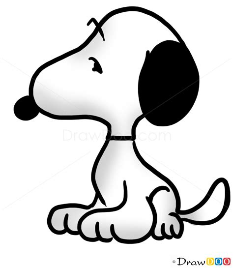 draw snoopy dogs puppies easy drawing
