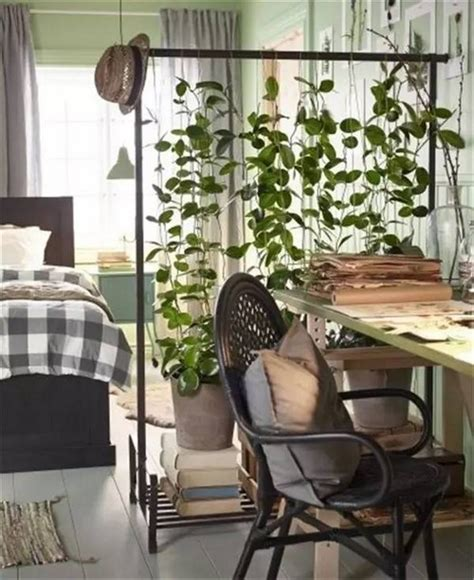 plant room divider 20 practical room divider ideas messagenote