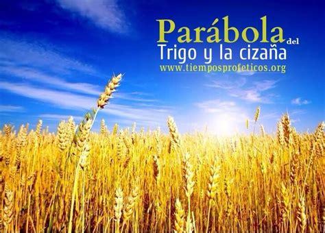 parabola del trigo y la mala hierba youtube par 225 bola del trigo y la ciza 241 a