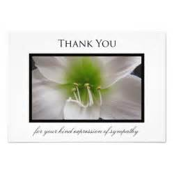 sympathy thank you flat card amaryllis 3 5 quot x 5 quot invitation card zazzle