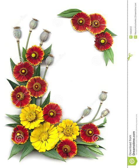 imagenes rojas y amarillas marco decorativo de flores rojas y amarillas brillantes