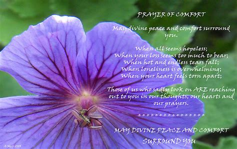prayers for comfort quot prayer of comfort quot by sarnia2 redbubble