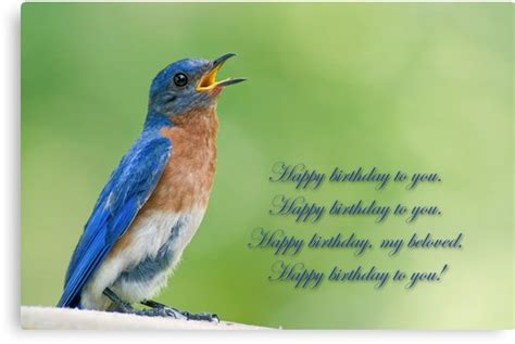 happy birthday bird images happy birthday bird www pixshark images galleries