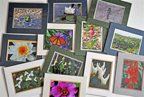 Matting Prints by Mounting And Matting Prints Best Practices For