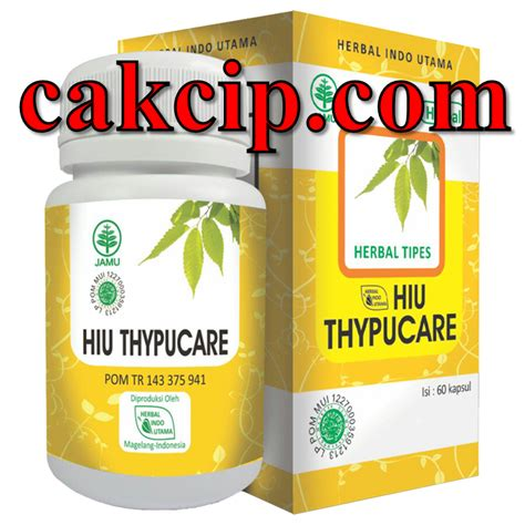 Hiu Thypucare Tipes Thypus hiu thypucare gresik jual hiu thypucare herbal indo utama asli