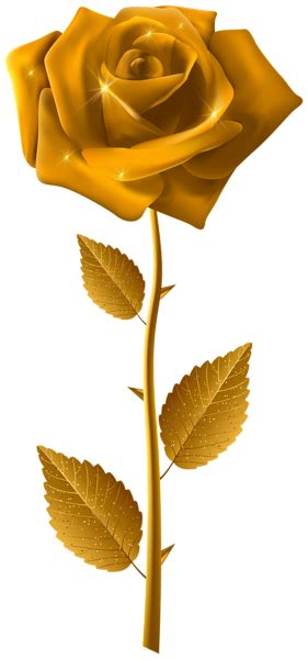 gold rose  steam transparent image gallery