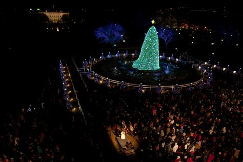 national tree tickets national tree lighting tickets rainforest